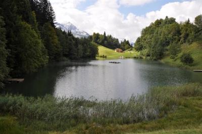 Idyllischer Seewaldsee